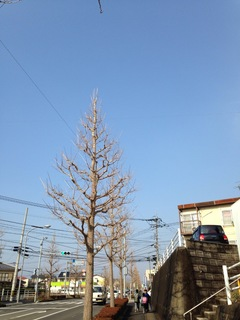 image-3b093.jpg